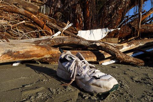 Craig sneaker-2